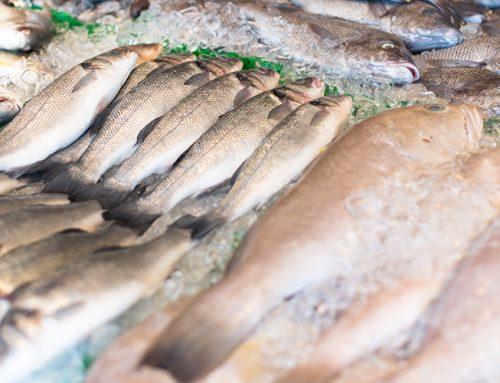 Вступил в силу Технический регламент «О безопасности рыбы и рыбной продукции»